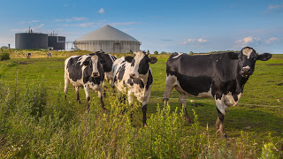 RENEW Wisconsin Supports State Biodigester Investment