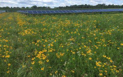 Landmark Day for Wisconsin Solar