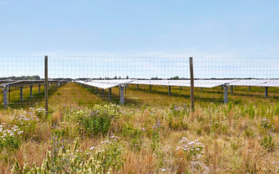 Onion River Solar Farm